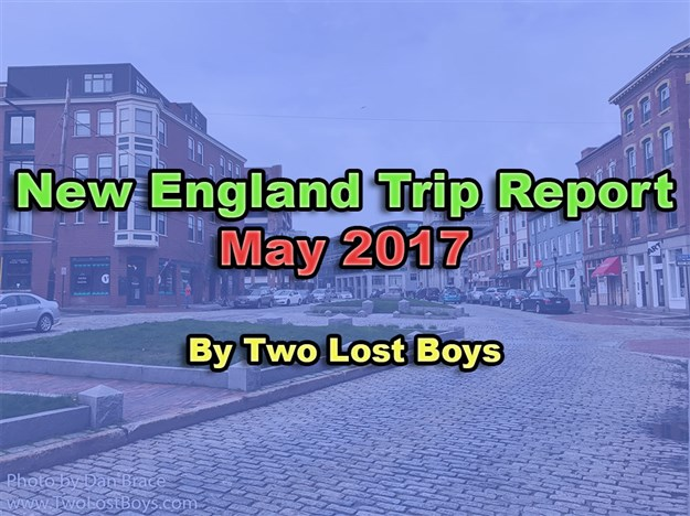 New England Trip Report, May 2017