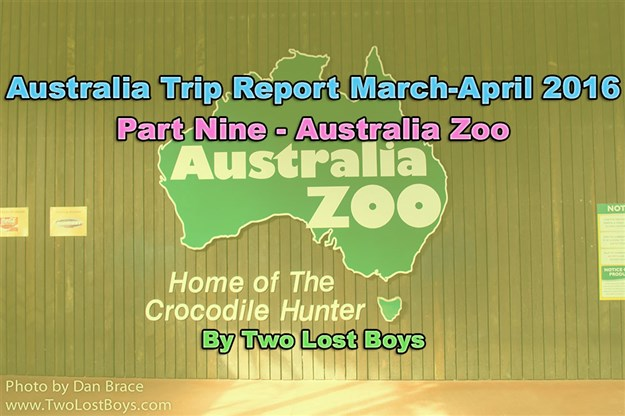 Australia March-April 2016 Trip Report, Part 9 - Australia Zoo