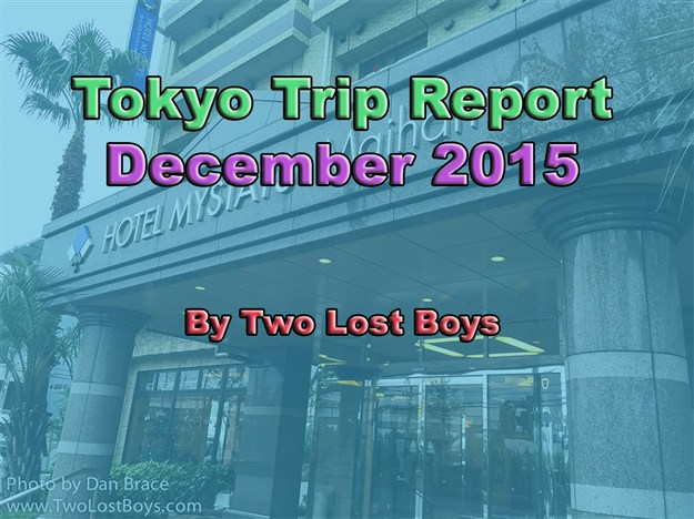 Tokyo December  Trip Report  The City The Airport Our Hotel